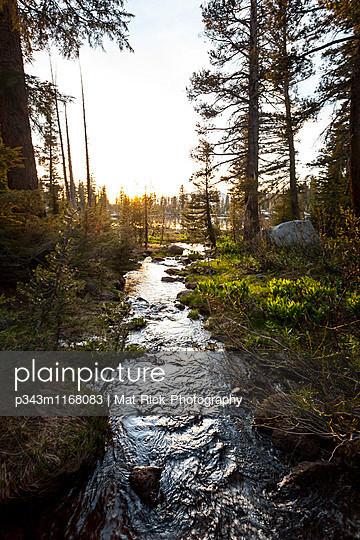 p343m1168083 von Mat Rick Photography