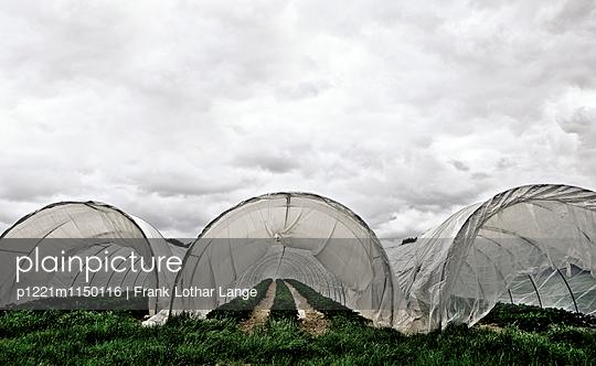Gewächshäuser - p1221m1150116 von Frank Lothar Lange