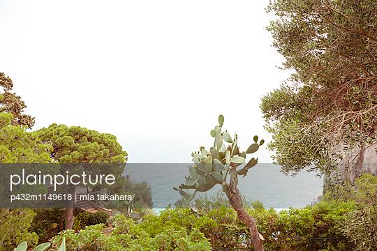 Landschaft auf Capri - p432m1149618 von mia takahara