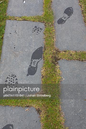 p847m1151841 von Johan Strindberg