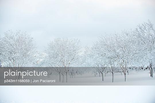 p343m1168059 von Jon Paciaroni