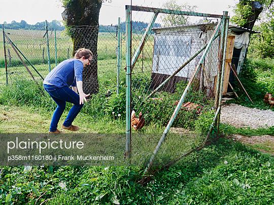 Eine Frau versucht ein Huhn zu fangen - p358m1160180 von Frank Muckenheim