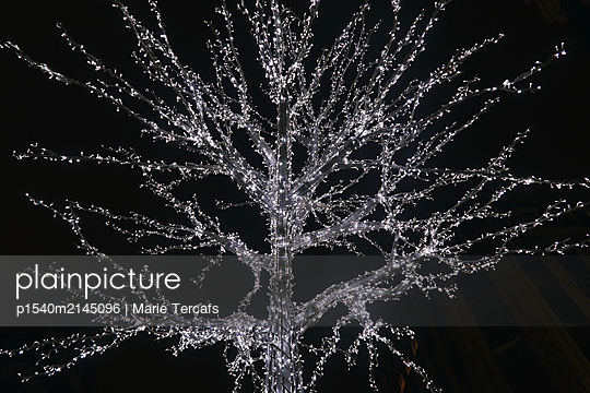 Christmas tree - p1540m2145096 by Marie Tercafs
