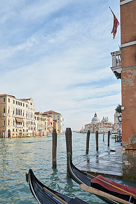 Canal Grande in Venedig - p1312m1575206 von Axel Killian