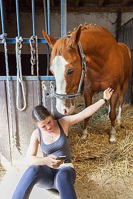 Riding horse - p1293m1138930 by Manuela Dörr
