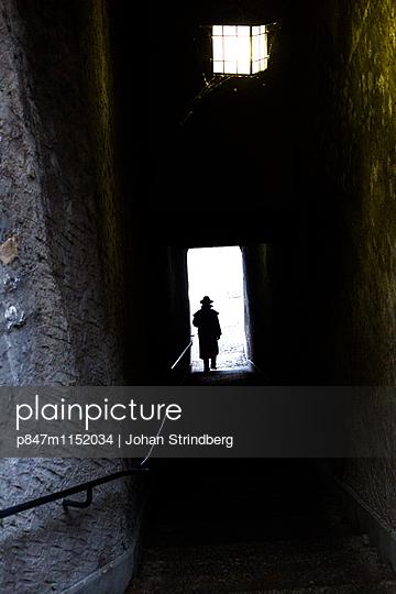 p847m1152034 von Johan Strindberg