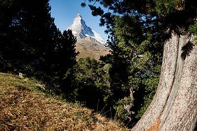 Swiss - p1203m1071683 by Bernd Schumacher