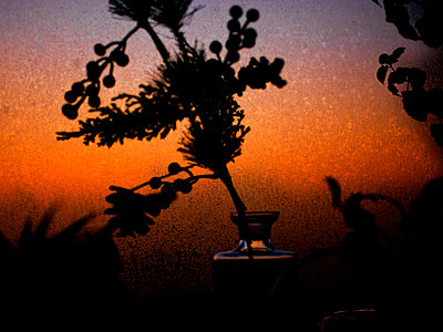 Red sky behind frosted glass - p1279m1476157 by Ulrike Piringer