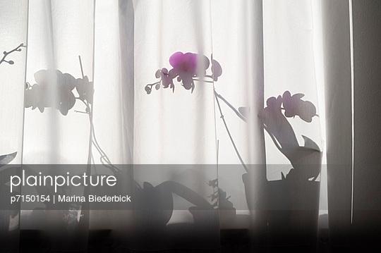Schatten - p7150154 von Marina Biederbick