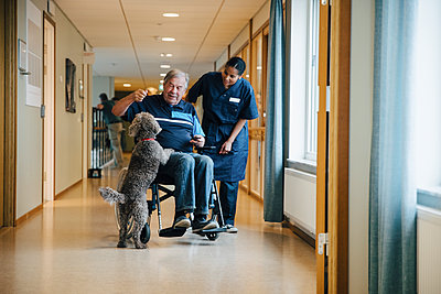 Full length of female nurse standing by disabled elderly man on wheelchair playing with dog in alley at retirement home - p426m2149319 by Maskot