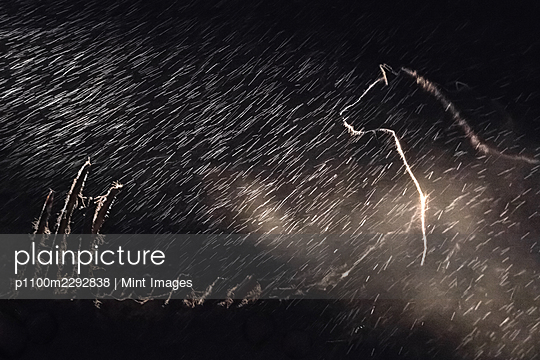 A spotted hyena stands in the darkness in the rain, spotlit - p1100m2292838 by Mint Images