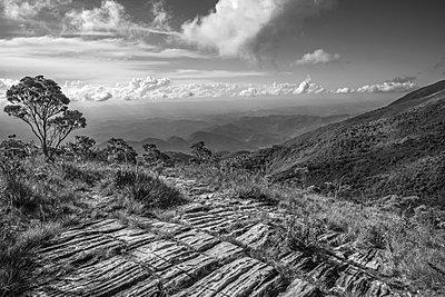 National Park of Alto Caparao - p1166m2137561 by Cavan Images