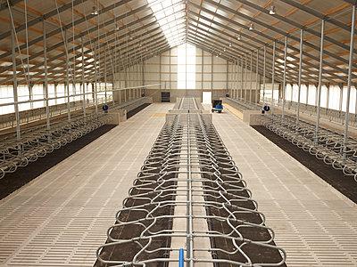 IIndustrial livestock farming - p1188m1002889 by Henk Wildschut