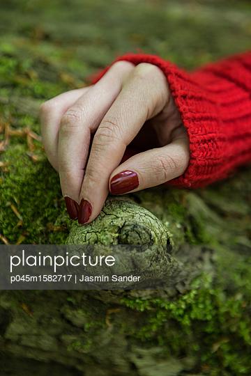 Hand auf Baumstamm - p045m1582717 von Jasmin Sander