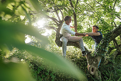 Father helping son to climb tree in backyard - p300m2275193 by Gustafsson