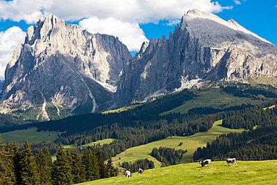 Alpen - p4880501 von Bias