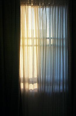 Light Through Sheer Curtains  - p1248m1169583 by miguel sobreira