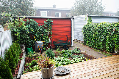 View of small garden - p312m992846f by Kari Kohvakka