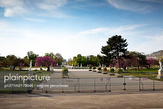 Fenced off park, Jardin des Tuileries, shutdown due to Covid-19 - p1371m2178046 by virginie perocheau