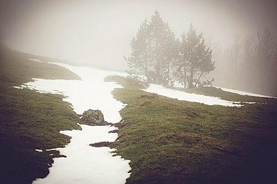 Nebel in den Bergen - p1150m1112985 von Elise Ortiou Campion