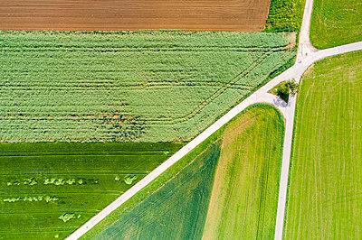 Germany, Baden-Wuerttemberg, Schurwald, Aerial view of fields in spring - p300m2003963 by Stefan Schurr
