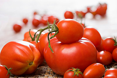 A variety of tomatoes - p9248365f by Image Source