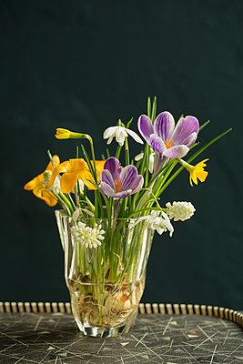 Bunter Frühlingsblumenstrauß - p948m2134106 von Sibylle Pietrek