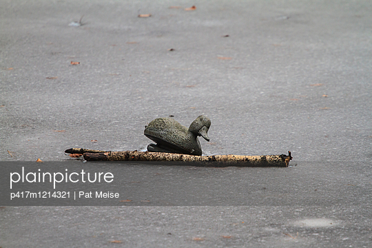 Ente - p417m1214321 von Pat Meise