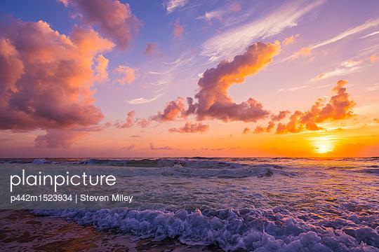 p442m1523934 von Steven Miley