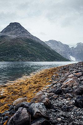 Fjord in Norwegen mit Blick auf Gipfel und Gletscher - p1497m2134056 von Sascha Jacoby