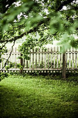 Garden fence - p971m911955 by Reilika Landen