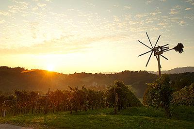 Sonnenaufgang - p1115m890243 von Nikolai Buroh