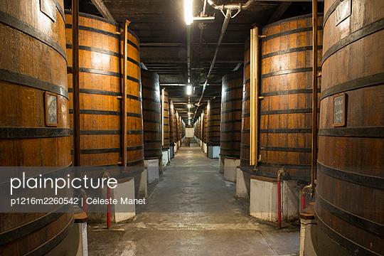 Barrels in winery cellar - p1216m2260542 by Céleste Manet