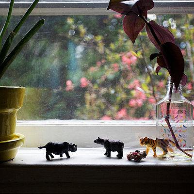 A line of miniature plastic toy animals on a window sill - p301m960831f by Peter Baker