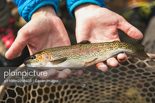 Close-up of woman with fish catch in forest - p1166m2258423 by Cavan Images