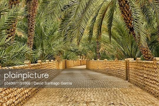 p343m1151066 von David Santiago Garcia