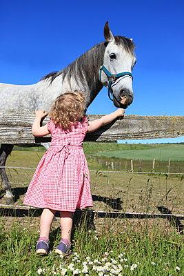 Mutige Pferde-Fütterin - p045m1040374 von Jasmin Sander