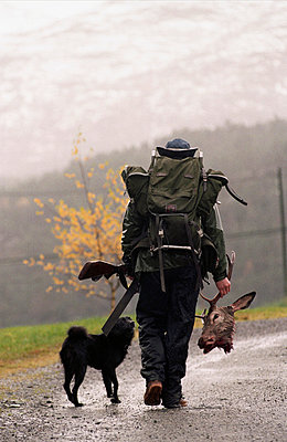 Hunter walking with hunting dog holding dead stag deer´s antlers, returning from hunting trip - p8475098 by Per Klaesson