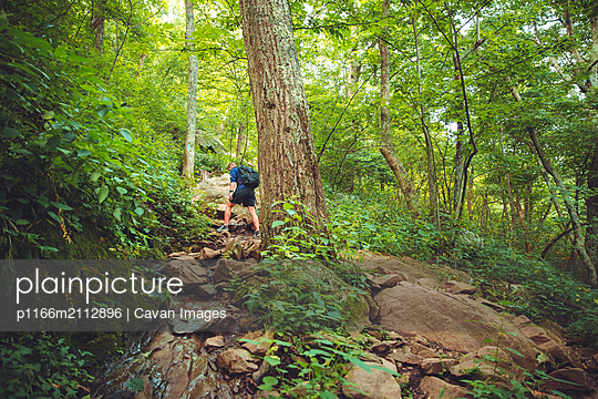 A young male hiker makes his way up a rocky path in the forest. - p1166m2112896 by Cavan Images