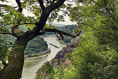 Blick ins Rheintal  - p1200m1118861 von Carsten Görling