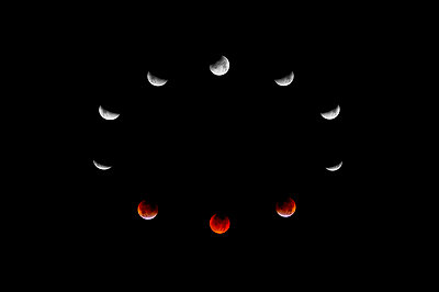 Lunar Eclipse - p343m964995 by Matt Mallams