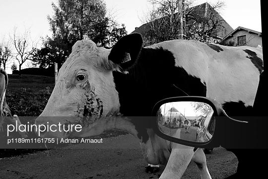 Franche-Comte, Doubs - p1189m1161755 von Adnan Arnaout