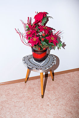 Christmas flower - p1149m2021169 by Yvonne Röder