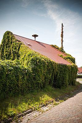 Uckermark - p171m1059607 by Rolau