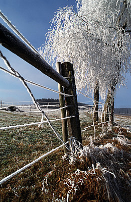 Winter at the countryside - p2680079 by Andres Wertheim