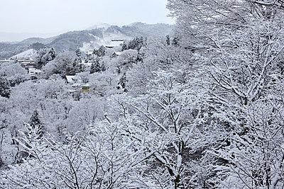 Nara Prefecture, Japan - p307m979182f by Yoshinori Takahashi