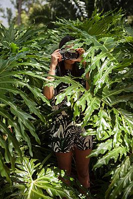 Fotografin verdeckt hinter grünen Blättern - p045m1424582 von Jasmin Sander