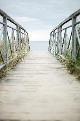 Beach path, Mecklenburg-Vorpommern, Germany - p1643m2229406 by janice mersiovsky