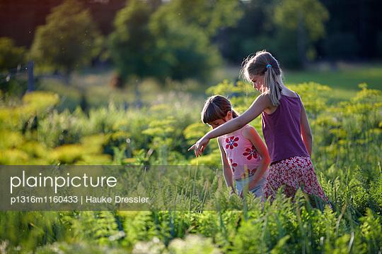 Zwei Mädchen in einem Gemüsebeet, Niedersachsen, Deutschland - p1316m1160433 von Hauke Dressler