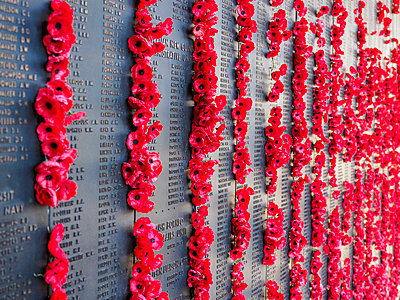 War memorial with poppies - p1427m2038154 by WalkerPod Images